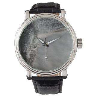 ヤギの家畜のイメージの上のヤギの目の終わり 腕時計