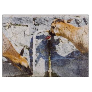 ヤギの飲料水、動物の写真撮影 カッティングボード