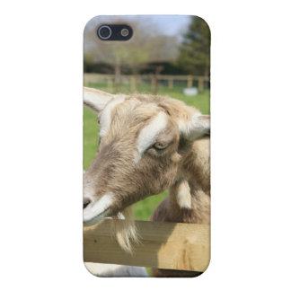 ヤギのiPhoneの場合 iPhone 5 ケース