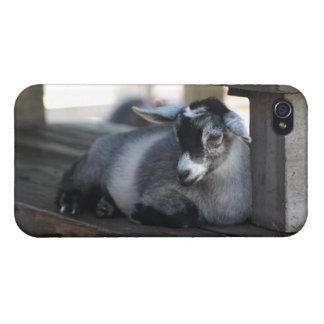ヤギのIphone 4ケース iPhone 4/4Sケース