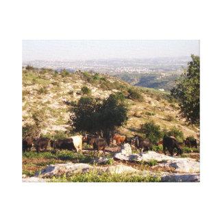 ヤギを牧草を食べるヨルダン キャンバスプリント
