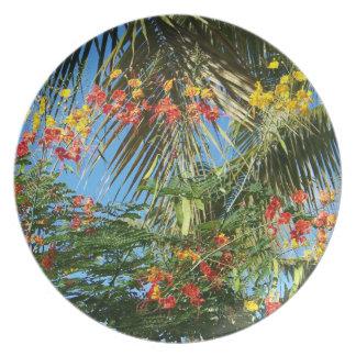 ヤシの木およびカリブので赤い黄橙色の花 プレート