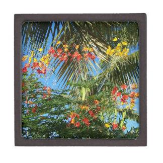 """ヤシの木およびカリブのな花!  Prem Giftbox 3"""" ギフトボックス"""