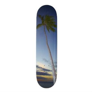 ヤシの木および日没のプランテーションアイランドリゾート 18.4CM ミニスケートボードデッキ
