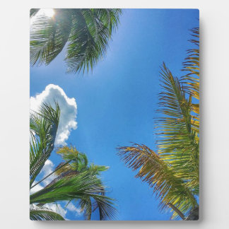 ヤシの木および雲 フォトプラーク