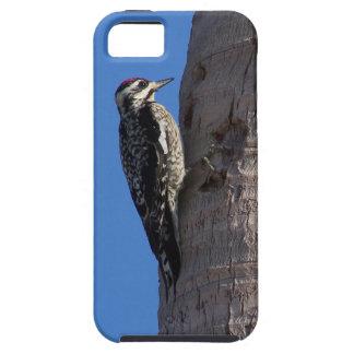 ヤシの木のiPhoneの例のキツツキ iPhone SE/5/5s ケース