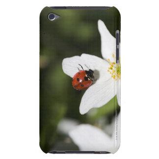 ヤブイチゲストックホルムスウェーデンのてんとう虫 Case-Mate iPod TOUCH ケース