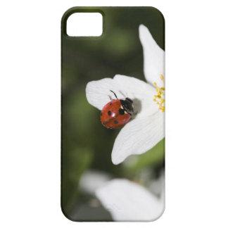 ヤブイチゲストックホルムスウェーデンのてんとう虫 iPhone SE/5/5s ケース