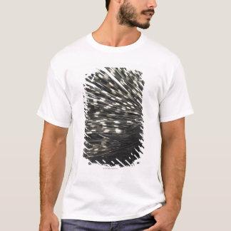 ヤマアラシのクイル Tシャツ
