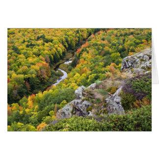 ヤマアラシ山の秋色 カード