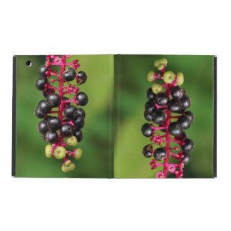 ヤマゴボウ属の果実 iPad ケース