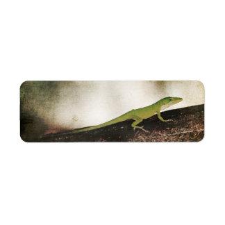 ヤモリのブラウン木枝の緑のCameleonのトカゲ ラベル