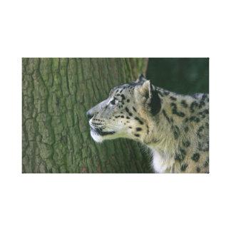 ユキヒョウの美しい写真の包まれたなキャンバスのプリント キャンバスプリント