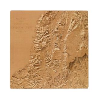 ユタの立体模型地図 ウッドコースター