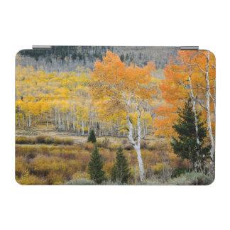 ユタ、米国。 《植物》アスペンの木およびヤナギの雑木林 iPad MINIカバー