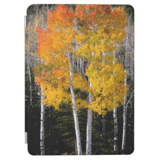 ユタ、米国。 《植物》アスペンの木(Populus Tremuloides) 3 iPad Air カバー