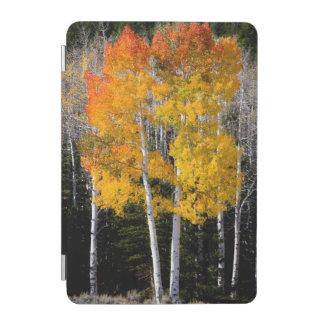 ユタ、米国。 《植物》アスペンの木(Populus Tremuloides) 3 iPad Miniカバー