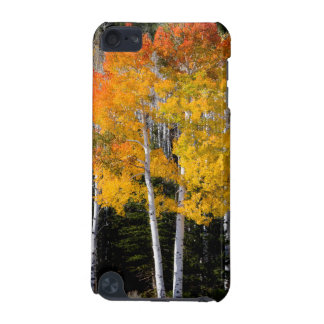 ユタ、米国。 《植物》アスペンの木(Populus Tremuloides) 3 iPod Touch 5G ケース
