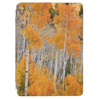 ユタ、米国。 《植物》アスペンの木(Populus Tremuloides) 4 iPad Air カバー