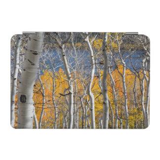ユタ、米国。 《植物》アスペンの木(Populus Tremuloides) iPad Miniカバー