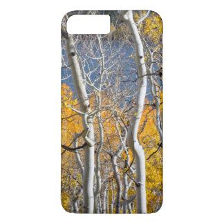 ユタ、米国。 《植物》アスペンの木(Populus Tremuloides) iPhone 8 Plus/7 Plusケース