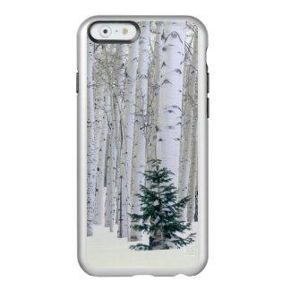ユタ。 米国. 《植物》アスペン(Populusのtremuloides)及びダグラス Incipio Feather Shine iPhone 6ケース