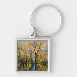 ユタ。 米国. Peachleafのヤナギの木 キーホルダー