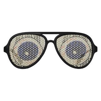 ユニセックスな大きい目のサングラス2 アビエーターサングラス