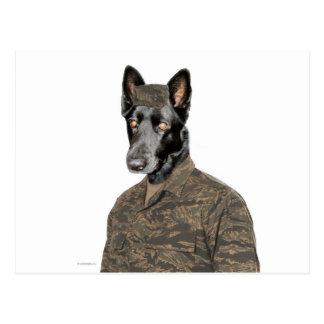 ユニフォームの犬 ポストカード