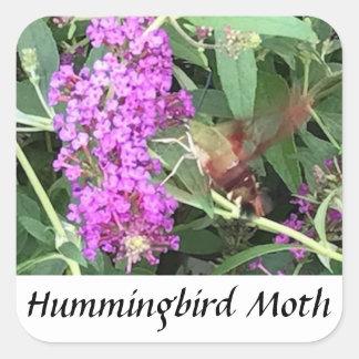 ユニークな見る昆虫のハチドリガのステッカー スクエアシール