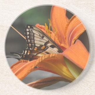 ユリのコースターの蝶 コースター
