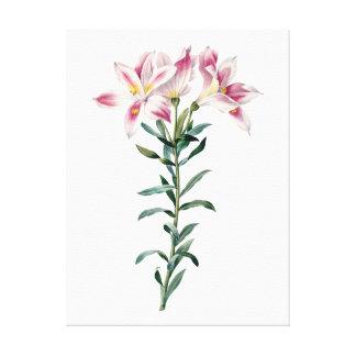 ユリの植物の優れた質のプリント キャンバスプリント