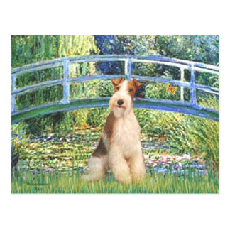 ユリの池橋-ワイヤーフォックステリア犬3 ポストカード