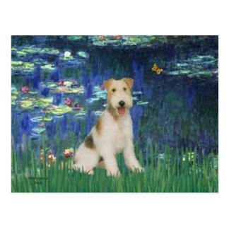 ユリ5 -ワイヤーフォックステリア犬#1 ポストカード