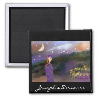 ヨセフの夢の磁石 マグネット