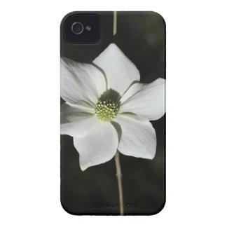 ヨセミテの野生のミズキの開花 Case-Mate iPhone 4 ケース
