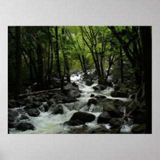 ヨセミテ国立公園のBridalveilの入り江 ポスター