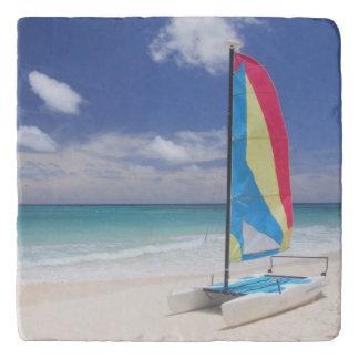 ヨットが付いているビーチの眺め トリベット