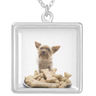 ヨークシャテリアによる犬の御馳走のボール シルバープレートネックレス