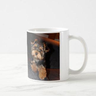 ヨークシャテリアのマグ コーヒーマグカップ