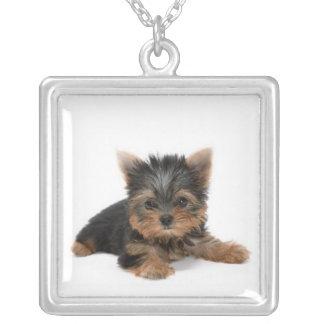 ヨークシャテリアの子犬のネックレス シルバープレートネックレス