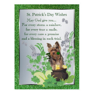 ヨークシャテリアのSt pattys dayのスピリチュアルメッセージ ポストカード