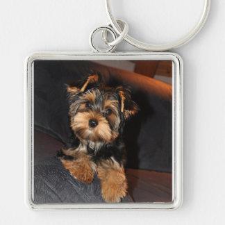ヨークシャテリア犬Keychain キーホルダー