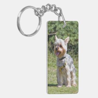 ヨークシャテリア、ヨークシャーテリア犬のかわいく美しい写真 キーホルダー