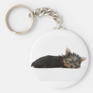 ヨークシャーテリアの子犬の睡眠 キーホルダー