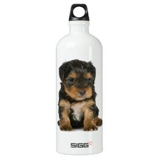 ヨークシャーテリアの子犬 ウォーターボトル
