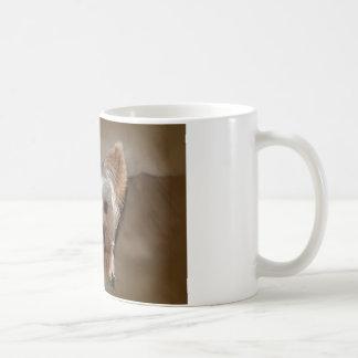 ヨークシャーテリア コーヒーマグカップ
