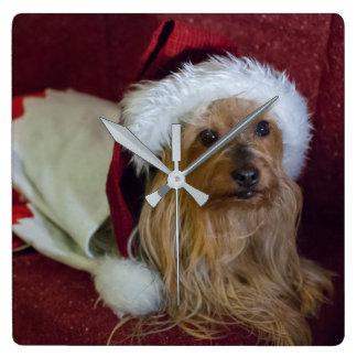 ヨークシャ(ヨークシャーテリア)/膚触りがよいテリアのクリスマスの時計 スクエア壁時計