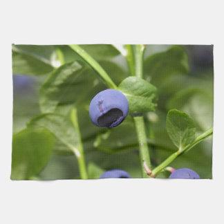 ヨーロッパのブルーベリーのフルーツ キッチンタオル