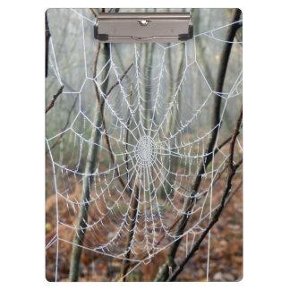 ヨーロッパの庭くものクリップボードのくもの巣 クリップボード